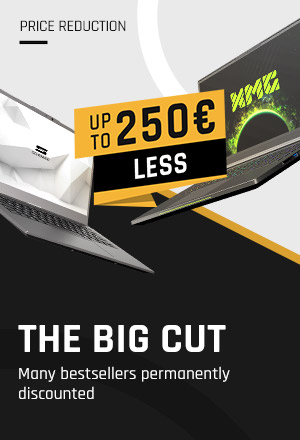The Big Cut Price Reduction