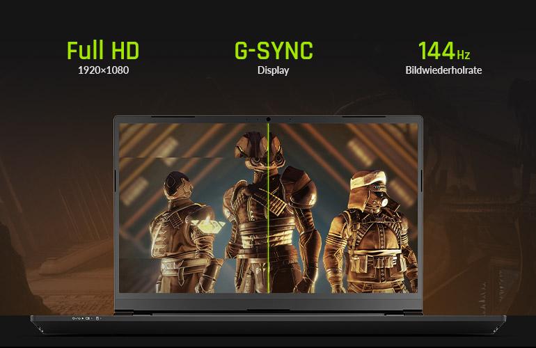 XMG PRO 15 - 144 Hz G-SYNC Display